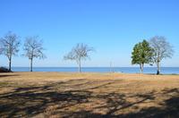 Home for sale: 112 Chapel Hill Dr., Bonneau, SC 29431