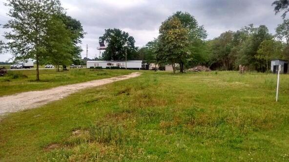 25957 Hwy. 59, Loxley, AL 36551 Photo 2