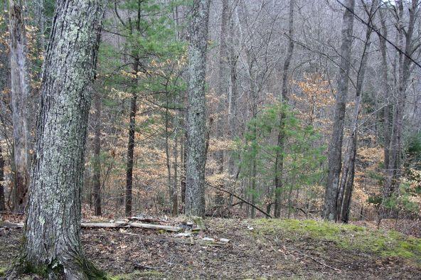 490 Cliffview, Campton, KY 41301 Photo 73