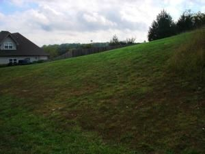 Lot 50 L 50 Whitetail Dr., Walnut Shade, MO 65771 Photo 5
