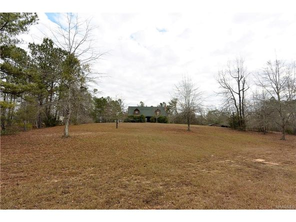 118 Old Colley Rd., Eclectic, AL 36024 Photo 42