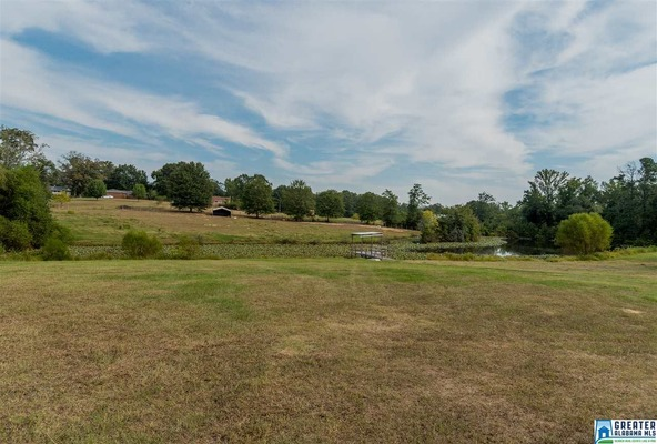 4075 Lindsey Loop Rd., Bessemer, AL 35022 Photo 7
