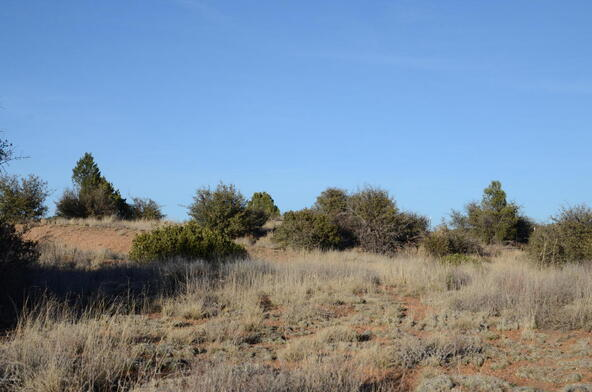 13050 N. Pheasant Run, Prescott, AZ 86305 Photo 7