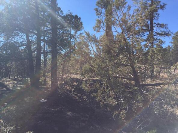 1525 S. Twin Peak Trail, Show Low, AZ 85901 Photo 4
