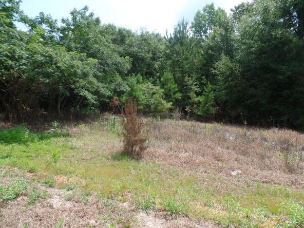 195 Shiloh Rd., Atmore, AL 36502 Photo 25