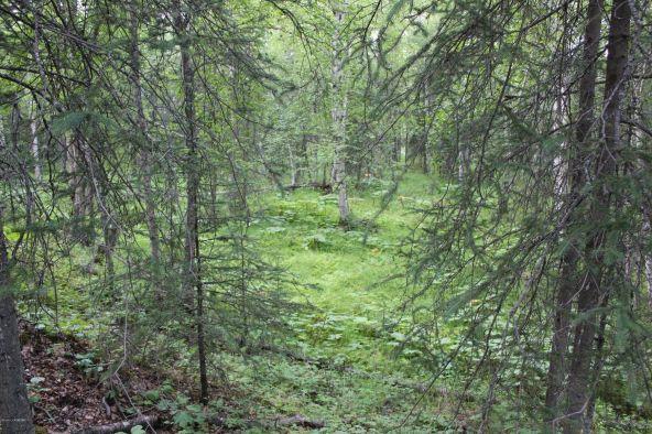 2492 N. Barnacle Dr., Wasilla, AK 99654 Photo 1