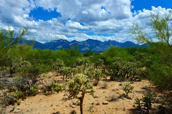 14601 N. Quiet Rain Dr., Oro Valley, AZ 85755 Photo 19