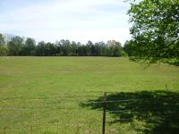 Home for sale: 509 Veeler Rd., La Fayette, GA 30728