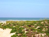 Home for sale: Tract 26 Hwy. 100, South Padre Island, TX 78597