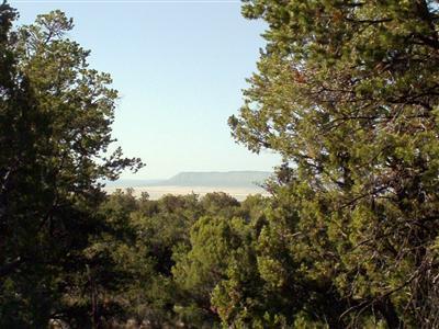54867 N. Presidio Parkway, Seligman, AZ 86337 Photo 10