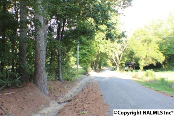 1041 County Rd. 277, Fort Payne, AL 35967 Photo 6