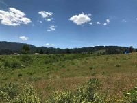 Home for sale: Lot 5 Clear Creek Estates, Boise, ID 83716