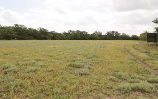 Fm 218, Pottsville, TX 76565 Photo 2