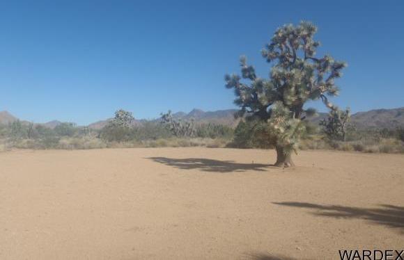 7241 E. Shadow Ridge Dr., Yucca, AZ 86438 Photo 23