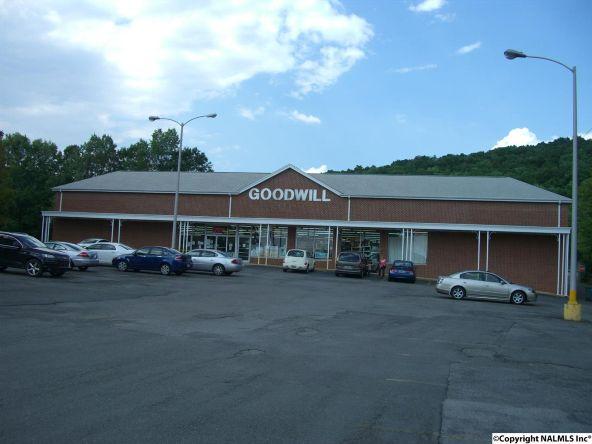 305 East Willow St., Scottsboro, AL 35768 Photo 2