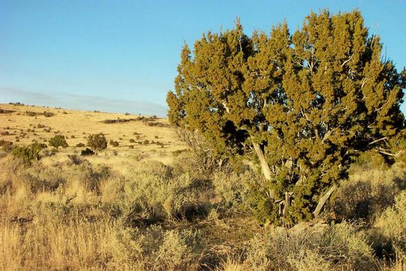 6218 S. Prairie Grass Ln., Williams, AZ 86046 Photo 16