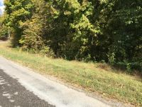 Home for sale: Lot 2 Lafever Ridge Rd. Rd., Silver Point, TN 38582