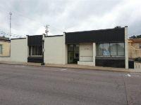 Home for sale: 619 Oak St., Baraboo, WI 53913