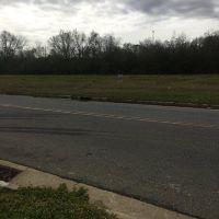 Home for sale: Lot 6 Greer St., Cordele, GA 31015