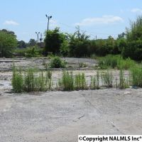 Home for sale: 105 Sutton Bridge Rd., Rainbow City, AL 35906
