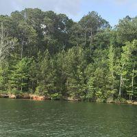 Home for sale: Lot 25 Shady Bay Dr., Jacksons Gap, AL 36861