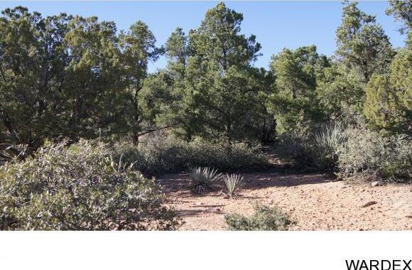 9999 N. Trap Springs Rd., Hackberry, AZ 86411 Photo 36