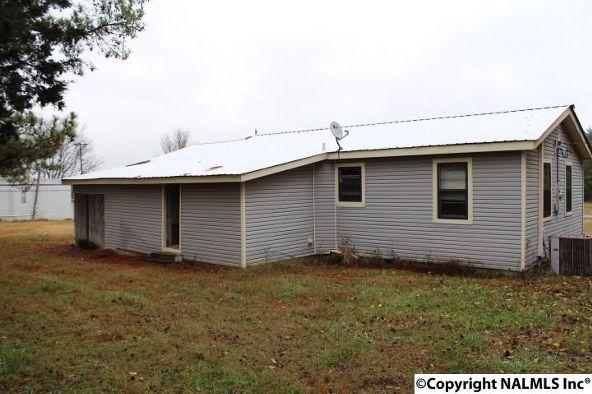 3111 County Rd. 200, Danville, AL 35619 Photo 6
