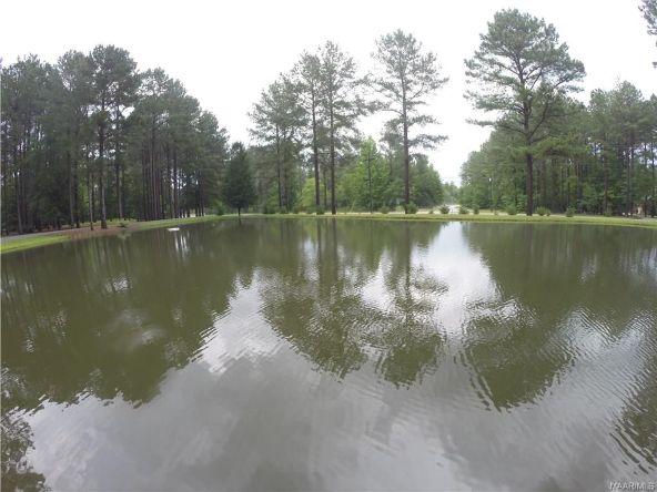 232 Plantation Trail, Mathews, AL 36052 Photo 6