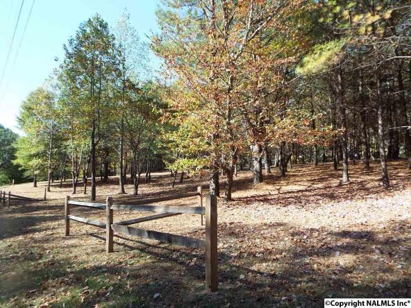 11 S. County Rd. 89, Mentone, AL 35984 Photo 3