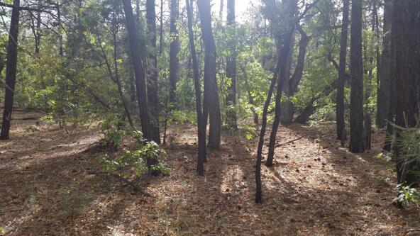 2702 Lockwood Dr., Lakeside, AZ 85929 Photo 3