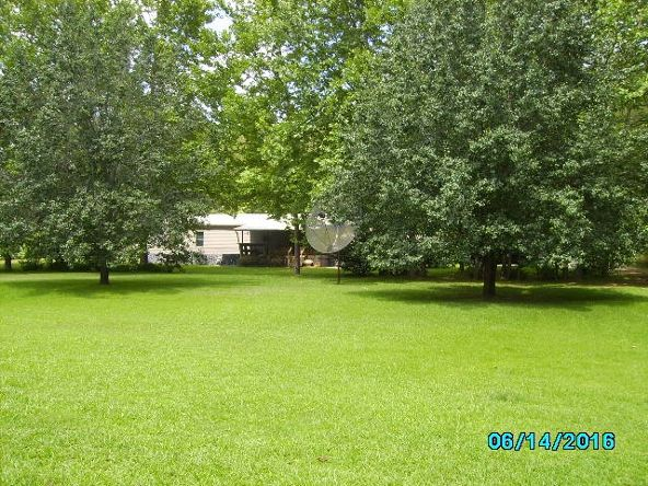 2426 County Rd. 432, Woodland, AL 36280 Photo 4