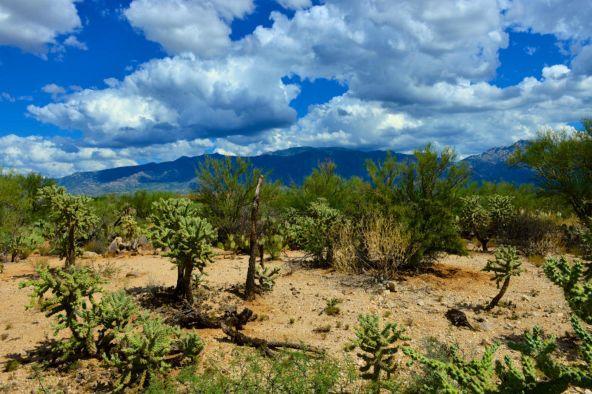 14601 N. Quiet Rain Dr., Oro Valley, AZ 85755 Photo 14