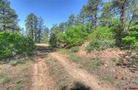 Home for sale: 39 Spur Dr., Durango, CO 81301