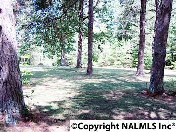 1172 County Rd. 639, Mentone, AL 35984 Photo 22