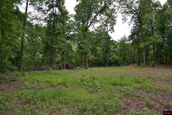 390 Mc 3041, Yellville, AR 72687 Photo 11