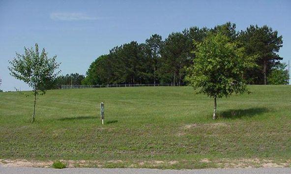 3 Lot 3 Carter Country Estates, Troy, AL 36079 Photo 1