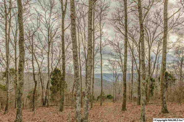 3 South Bluff Trail, Huntsville, AL 35803 Photo 24