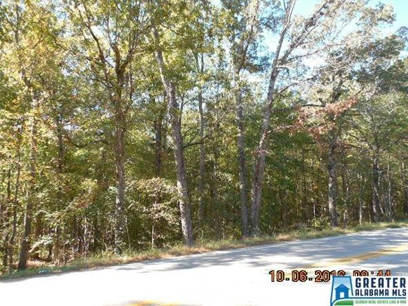 17226 Hwy. 78, Fruithurst, AL 36262 Photo 33