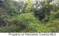 Home for sale: 0 Wood Dr., Hudson, FL 34667