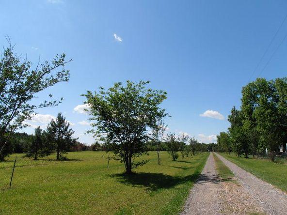 29320 County Rd. 32, Elberta, AL 36530 Photo 63