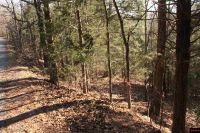 Home for sale: 00 Howard Creek Rd., Midway, AR 72651