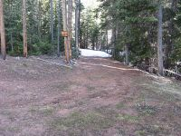 Home for sale: 330 Mescalero Dr., Red Feather Lakes, CO 80545