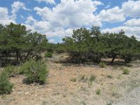Home for sale: 30025 Teal Run, Buena Vista, CO 81211