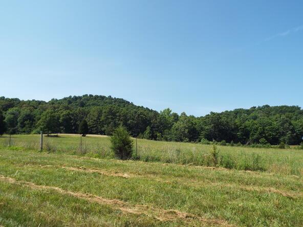 565 Cat Hollow Rd., Elk Horn, KY 42733 Photo 23