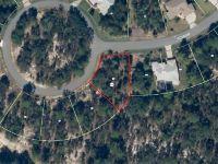 Home for sale: 17 Grevellia Ct., Homosassa, FL 34446