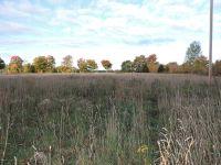 Home for sale: Farrand Rd., Colon, MI 49040