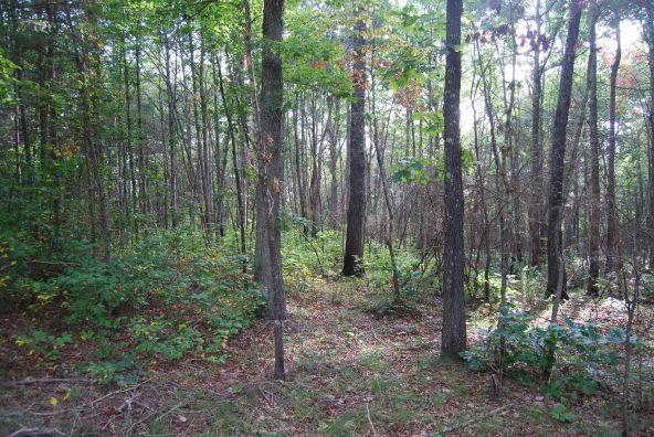 70 County 944 Rd., Mentone, AL 35984 Photo 74