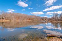Home for sale: 0 Blue Buck Creek Rd., Duck River, TN 38454