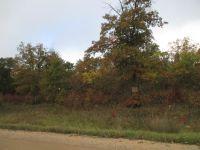 Home for sale: Wildwood Rd. N.E., Bemidji, MN 56601
