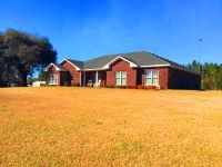 Home for sale: 1769 State Hwy. 153, Samson, AL 36477